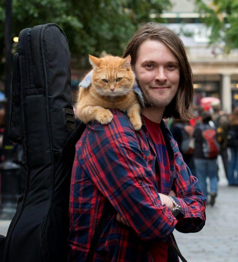 non-fiction - Как человек и кот обрели надежду на улицах Лондона - истории из жизни