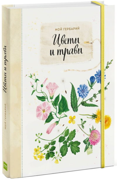 detskij-non-fikshn - Мой гербарий. Цветы и травы -