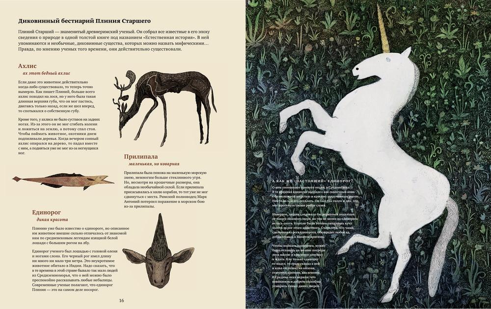 detskie-knigi - Фантастические твари и книга, которая все о них знает - фэнтези