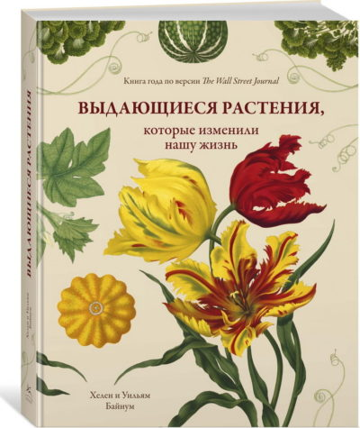 iskusstvo - Выдающиеся растения, которые изменили нашу жизнь -