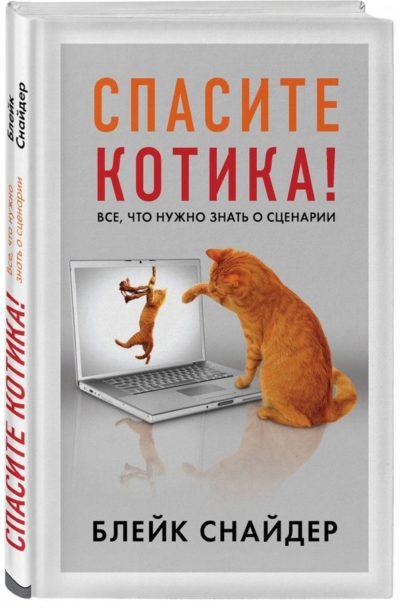pisatelstvo - Спасите котика! Все, что нужно знать о сценарии -