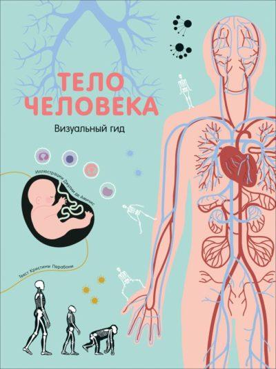 detskij-non-fikshn - Тело человека. Визуальный гид -